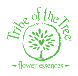 Tribe of the Tree flower essences